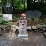 東京で人気の山、高尾山(たかおざん)