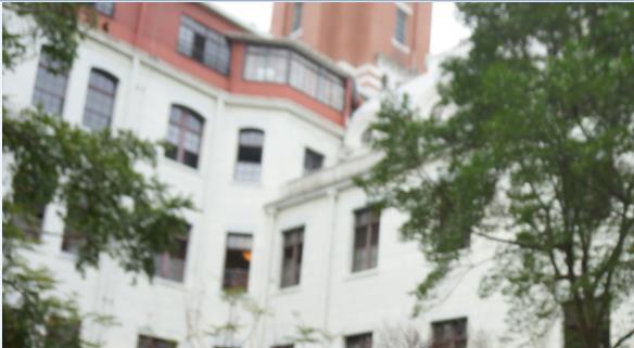 台湾総統府中庭