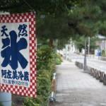 日本に数店しかない、「天然かき氷」の店に行ってきました