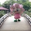 Happy : 大村、波佐見(はさみ)、鎌倉、宮城、葉山、福島、奥州、東京