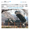 【開戦前】首相官邸よりメルマガで日本国民にお知らせ:「身を守るためにとるべき行動」を確認すること