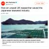 有明海の海苔(のり)産業を救ったのは、一人の英国人女性でした