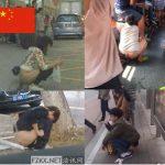 【閲覧注意】中国のトイレ事情を知ろう!どこでも尻を見せて用を足す中国人民、ニーハオ