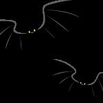 【理学部志望者向け】蝙蝠(コウモリ)の泳ぎ方:蝙蝠は鳥ではないのです