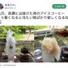 天然のかき氷はふわふわです。最近、九州でも食べられるようです