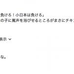 ワールドカップで、中国人記者が日本人女性に向かって「日本は負けろ!小日本は負けろ!」と言っている動画