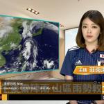 【動画あり】日本のTVが伝えないワールドカップにおける台湾と韓国の姿勢