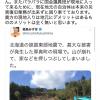 被災地の崩れた山を背景に記念撮影をした社民党・福島みずほさん